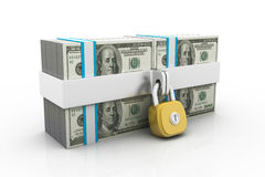 Dollars and lock Royalty Free Stock Photo