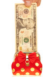 Dollars money in the purse Royalty Free Stock Photos