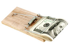 Dollars in mouse trap Stock Photography