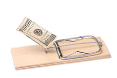 Dollars in mousetrap Stock Photo