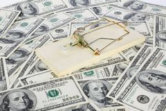 Dollars and mousetrap Stock Photography