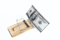 Dollars in mousetrap. Hundred dollar bills in a mousetrap on a white background Stock Photos