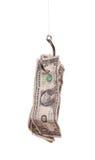 Dollars op vishaak Royalty-vrije Stock Afbeelding