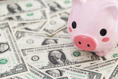 Dollars, piggy bank and computer Stock Photography