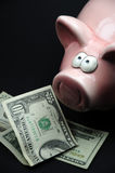 Dollars and piggybank Royalty Free Stock Photography