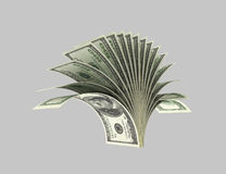 Dollars, plants, shrubs,Origami 2. Dollar banknotes executed in the form of plants, bush on a gray background Stock Images