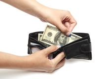 Dollars in purse Royalty Free Stock Photography