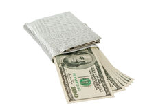 Dollars with a purse isolated Royalty Free Stock Images
