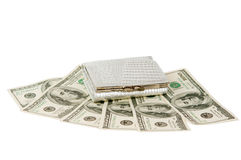 Dollars with a purse isolated Royalty Free Stock Photo