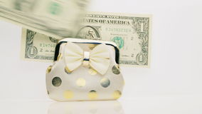 Dollars and purse. stock footage