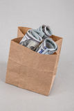 Dollars in a shopping bag Stock Photos