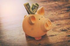 Dollars in spaarvarken Stock Afbeeldingen