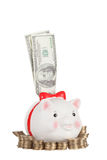 Dollars stick out of the pig moneybox Stock Images