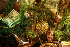 dollars under the Christmas fir Stock Image
