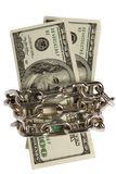 Dollars With Chain On White Royalty Free Stock Images