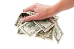 Dollars in woman hand Royalty Free Stock Photo