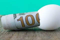 100 Dollarschein in einer Eierschale Das Konzept der Einsparung Lizenzfreies Stockfoto