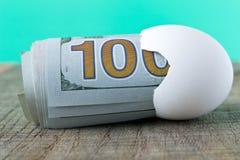 100 Dollarschein in einer Eierschale Das Konzept der Einsparung Stockbilder