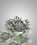 DollarsRose. Dollar banknotes fold into rose  represent financial concept and lifestyle Royalty Free Stock Image