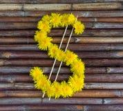 Dollarsymbool van bloemen wordt gemaakt die Royalty-vrije Stock Foto's