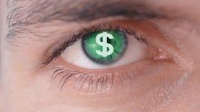 Dollartecken på eleven av det mänskliga ögat Begreppet av vinst Dollarlogo på eleven av ögat Begreppet av framställning arkivfilmer