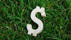 Dollarteken van hout op grasachtergrond Stock Afbeeldingen