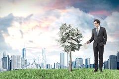 Dollarträd i en kruka, äng, stad, man framförande 3d royaltyfri bild