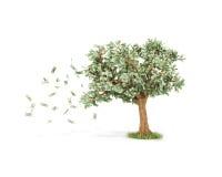 Dollarträd med hundra dollarräkningar Arkivbild