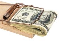 Dollarvaluta noterar i mousetrap Arkivbild