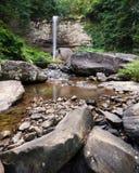 Dollekerveldalingen bij Cloudland-het Park van de Canionstaat in Georgië stock foto's
