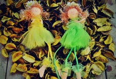 Dolls (fairies) Royalty Free Stock Image
