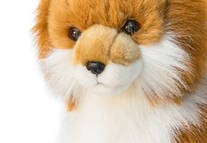 Dolly Dog toy Cute  beautiful on white background Stock Images