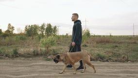 Dolly schot van de Jonge sportieve mens die met zijn bullmastiffhond openlucht lopen bij aard na crossfit opleiding stock video