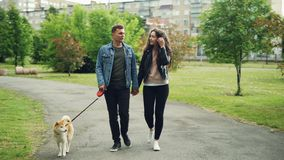 Dolly schot van vrolijke mensenstudenten die de hond in stadspark lopen, leidt de kerel de hond en houdt zijn meisje ` s