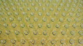 Dolly Shot av tomma glasflaskor på en fabrik, produktion av dricksvatten och drycker arkivfilmer