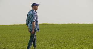Tired Farmer Stretching While Walking In Farm stock video