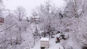 Dolly Shot of a Winter Wonderland. A slow aerial dolly shot of a backyard`s snowy winter wonderland stock video