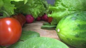 Dolly strzał krajowi i zbierający warzywa na drewnianym stołowym tle Sunący przez świeżej sałaty, sałatka, pomidor, rzodkiew zbiory
