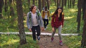 Dolly strzelał uśmiechnięte turysta dziewczyny, mówienie jest ubranym przypadkową odzież i faceci chodzi w lasowych przewożenie p zbiory