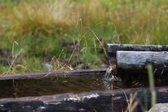 Dolly-tub. Old wooden trough. Switzerland stock images