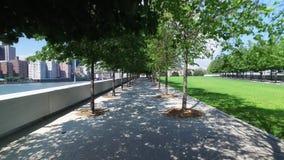 Dolly Walking Shot av Treelined banor på Franklin D Roosevelt Four Freedoms Park stock video