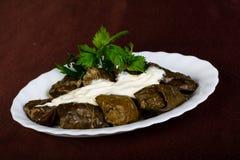 Dolma - γεμισμένο κρέας στο σταφύλι στοκ εικόνες με δικαίωμα ελεύθερης χρήσης