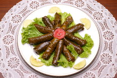 Dolma. Vine leaves filled with rice, lebanese cuisine Stock Photography