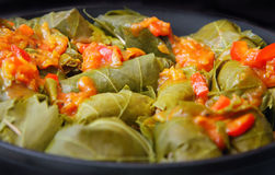 Dolma Royalty Free Stock Photo