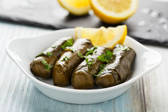 Dolma Fotos de Stock Royalty Free