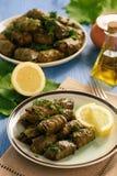 Dolma - Blätter der angefüllten Trauben, traditioneller Mittelmeerteller Stockfoto