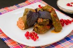 Dolma - esta uva sae enchido com a carne triturada arroz-baseada, também fervida É comum nas cozinhas Cáucaso, Fotos de Stock Royalty Free