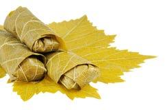 Dolma on grape leaf Stock Photos