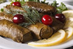 Dolma of grape leaves with herbs on a plate macro. horizontal Stock Image
