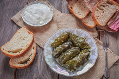 Dolma with grape leaves and Matsunami . Royalty Free Stock Images